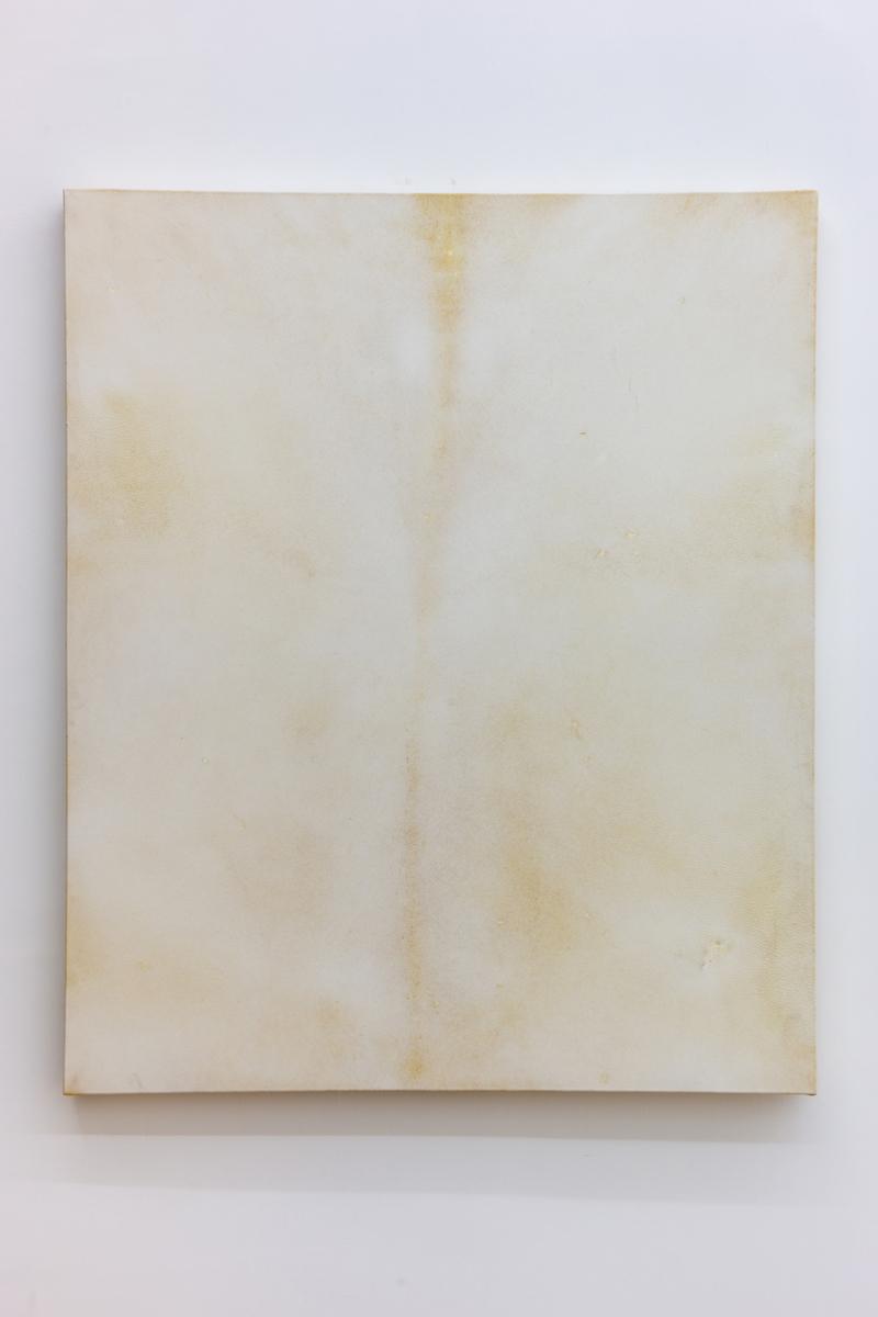 Vellum, 2018 - 75 x 90 cm