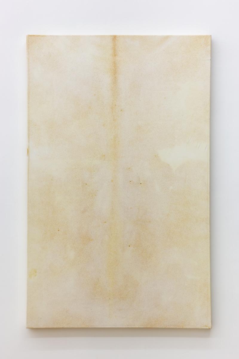 Vellum, 2018 - 65 x 102,5 cm